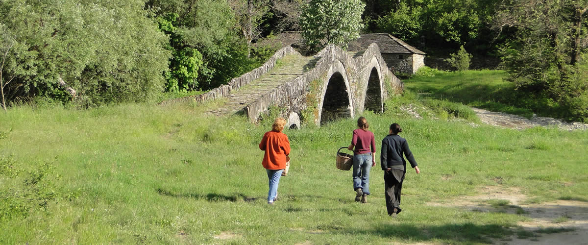 Thematic walks. Together with mountain guide Stelios Tsialikis, we organize personalized walks and hikes around Zagori, depending on your interests and experience in trekking, hiking and easy walking!